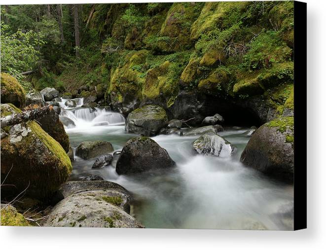Rivers Canvas Print featuring the photograph Resting Within The Song Of Water by Jeff Swan