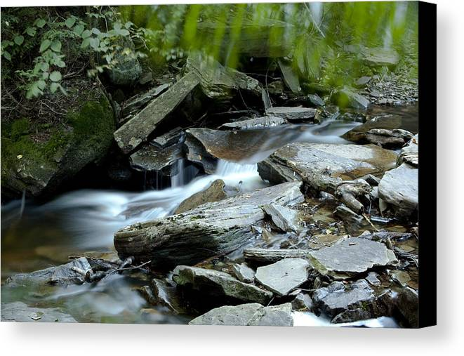 Waterfall Canvas Print featuring the photograph Rickett by Christina Durity