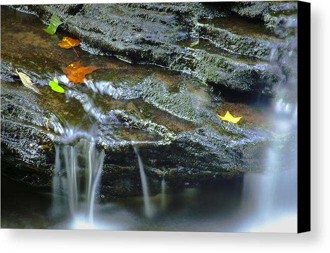 Stream Canvas Print featuring the photograph Ricketts Glen 4 by Christina Durity