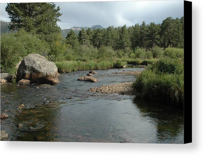 Nature Canvas Print featuring the photograph Rocky Mountain Stream by Kathy Schumann