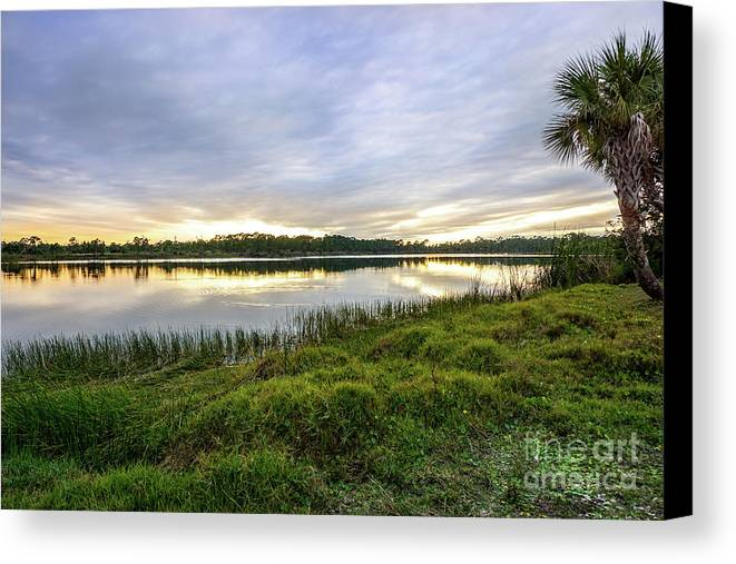 Saint Lucie County Canvas Print featuring the photograph Saint Lucie Nature by L Bee