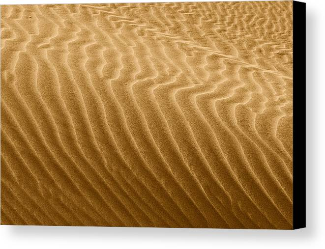 Sand Canvas Print featuring the photograph Sand Dune Mojave Desert California by Christine Till