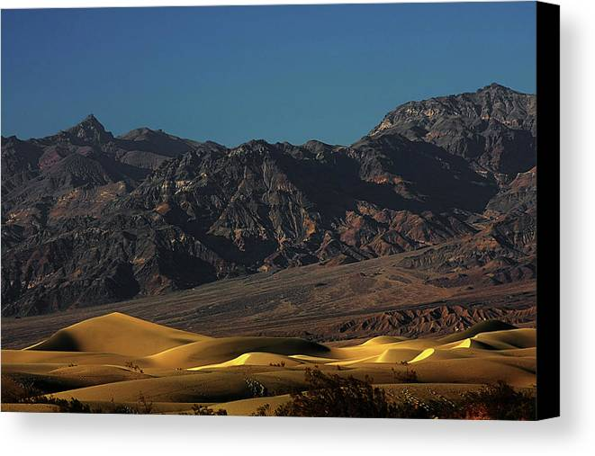 Eath Valley National Park Canvas Print featuring the photograph Sand Dunes - Death Valley's Gold by Christine Till