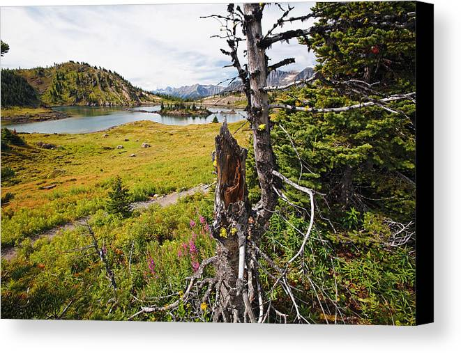 Alberta Canvas Print featuring the photograph Scenic Alpine Lake And Meadow by George Oze