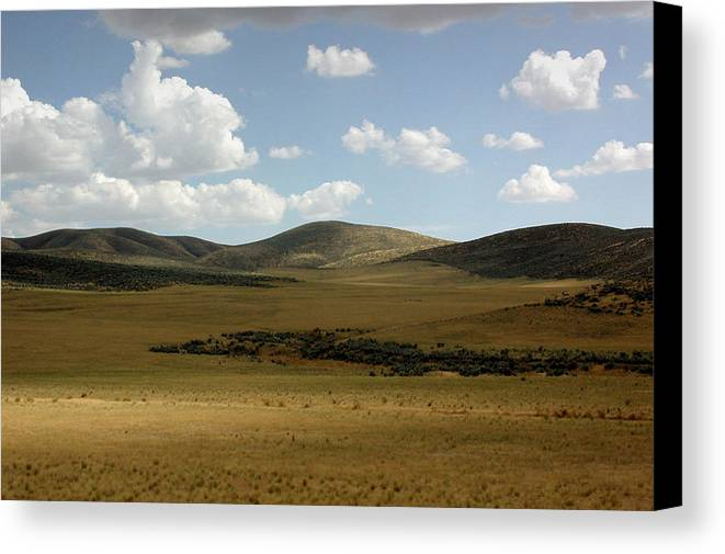 Screen Saver Canvas Print featuring the photograph Screen Saver by D'Arcy Evans