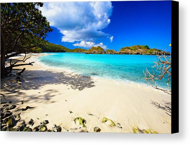 Bathing Canvas Print featuring the photograph Secluded Beach by George Oze