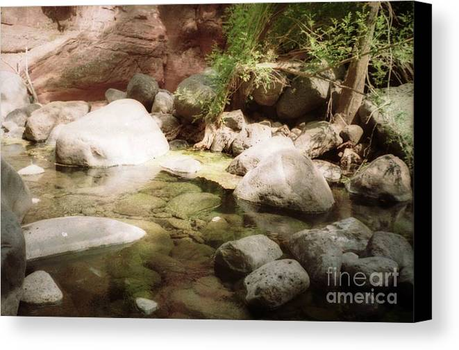 River Canvas Print featuring the photograph Sedona River Rock by Ted Pollard