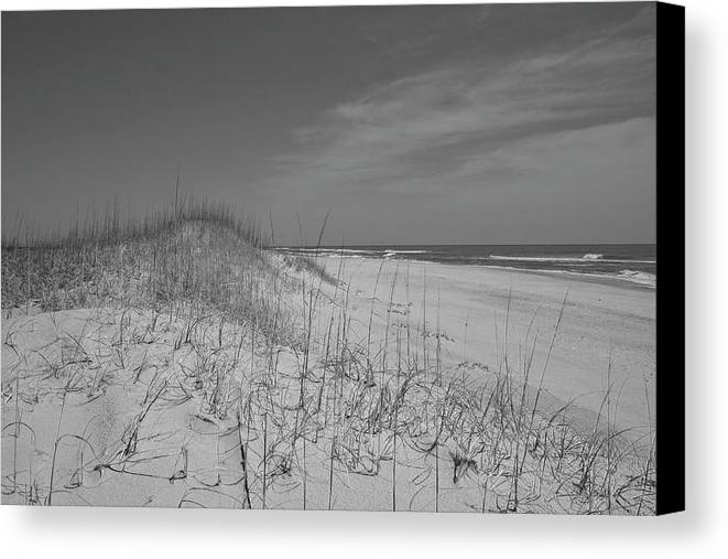 Beach Canvas Print featuring the photograph Serene Lookout by Betsy Knapp