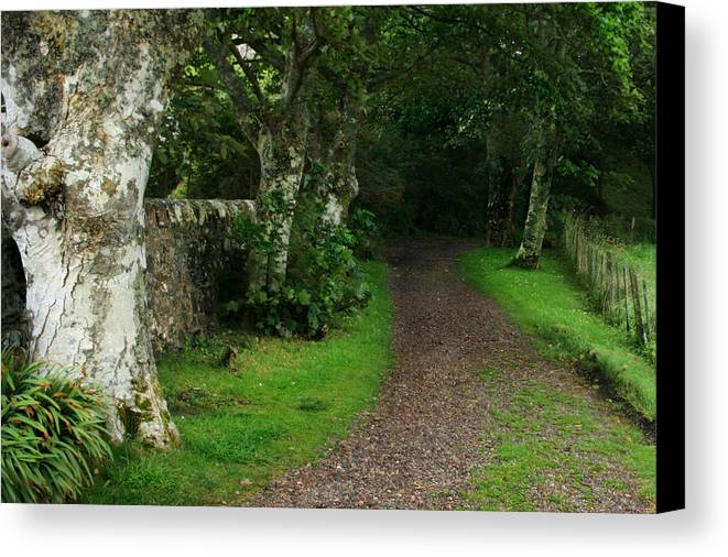 Scotland Canvas Print featuring the photograph Shady Lane by Warren Home Decor