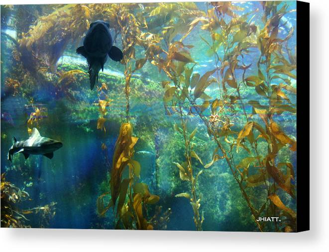 Sharks Canvas Print featuring the digital art Shark Bait by Justin Hiatt