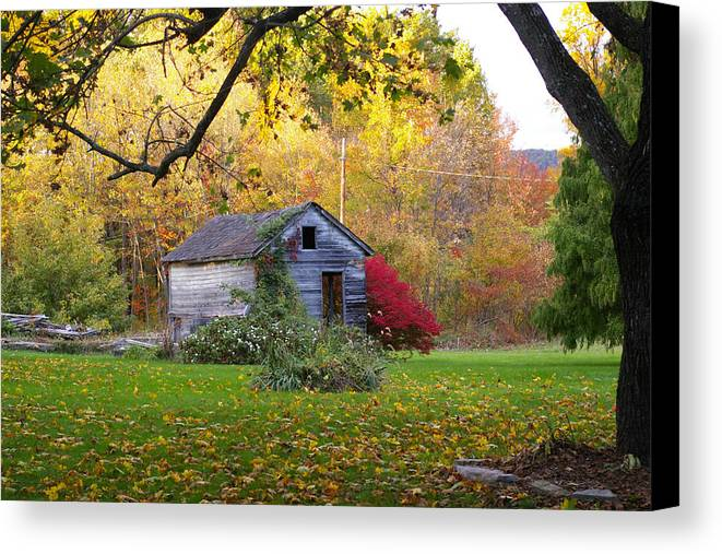 Landscape Canvas Print featuring the photograph Shed In Autumn by Renee Summers