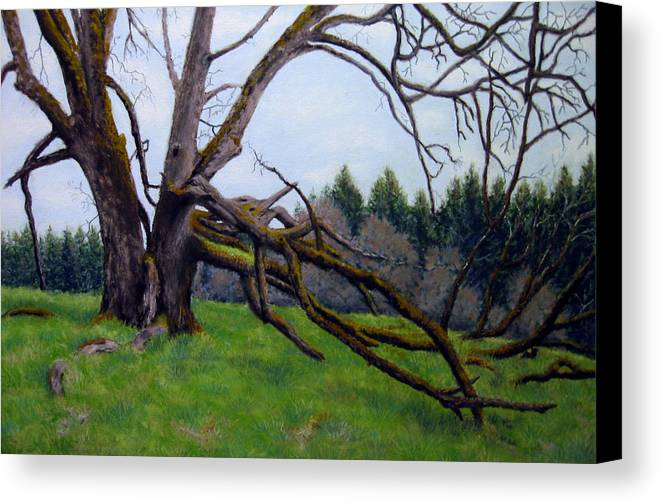 Landscape Canvas Print featuring the painting Signature Oak by Carl Capps