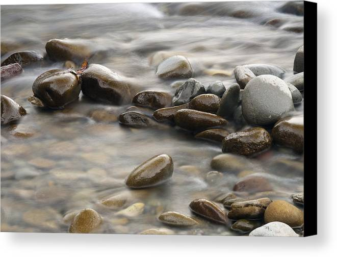 River Canvas Print featuring the photograph Silk River by Chad Davis