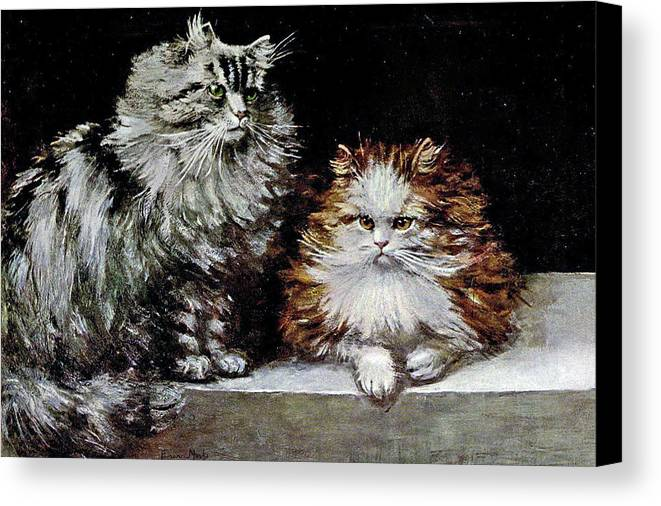 Cats Canvas Print featuring the painting Silver Orange And White Persians by W Luker Junior