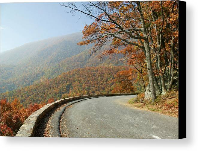 Skyline Drive Canvas Print featuring the photograph Skyline Drive I by Guy Crittenden