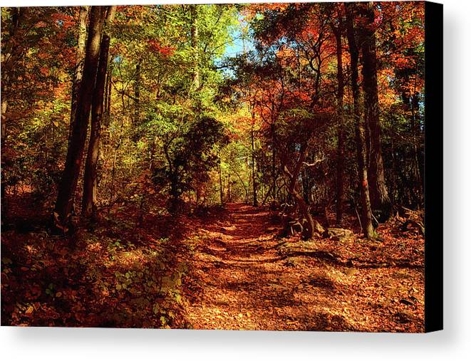 Fall Season Canvas Print featuring the photograph Sleeping Giant by Tricia Marchlik