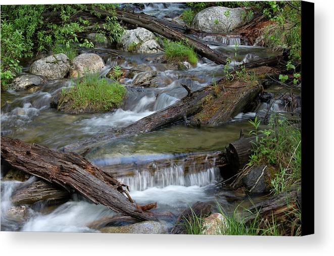 Stream Canvas Print featuring the photograph Small Rapids by George Sanquist