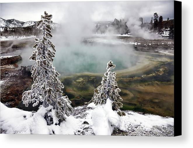 Horizontal Canvas Print featuring the photograph Snowy Yellowstone by Jason Maehl