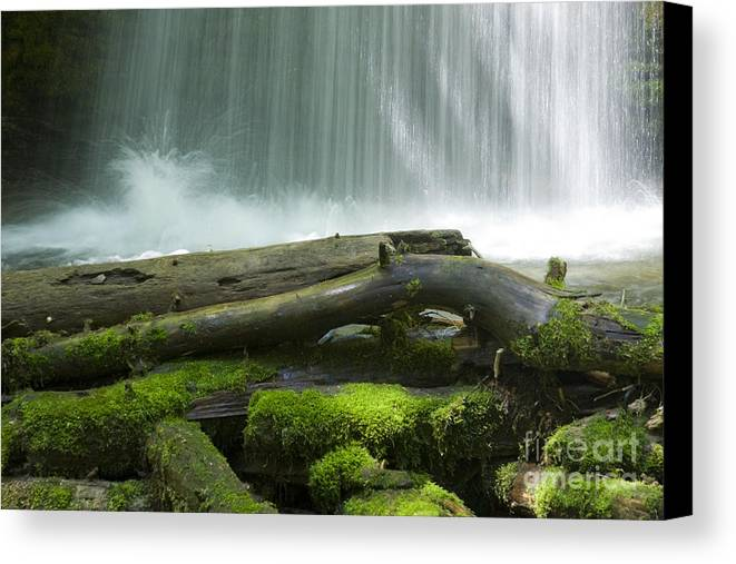 Idaho Canvas Print featuring the photograph Splash by Idaho Scenic Images Linda Lantzy