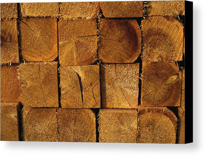 Group Canvas Print featuring the photograph Stack Of Logs by David Chapman