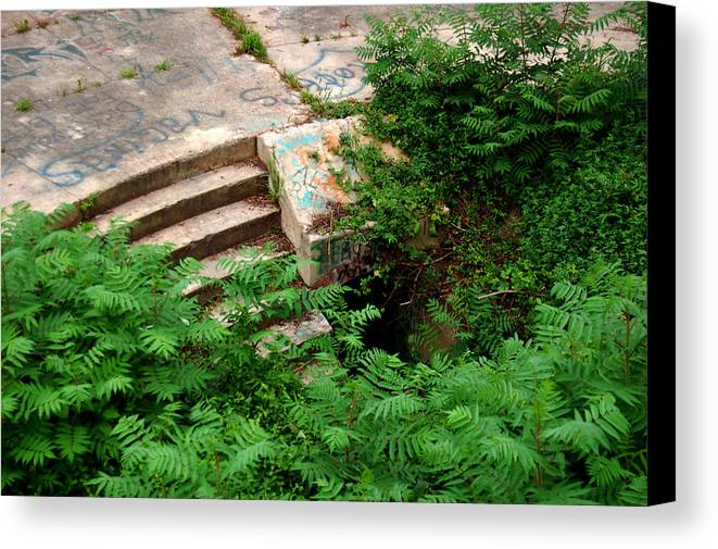 Stairway Canvas Print featuring the photograph Stairway To by Wayne Higgs