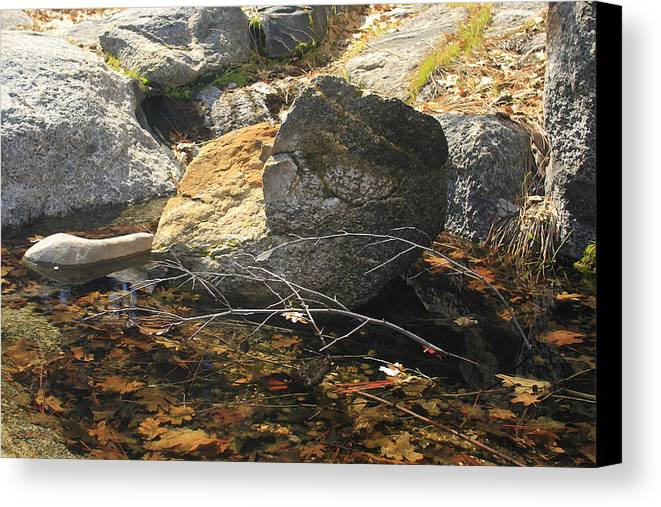 California Landscape Art Canvas Print featuring the photograph Stanislaus Rocks Spring by Larry Darnell