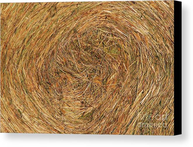 Hay Canvas Print featuring the photograph Straw by Michal Boubin