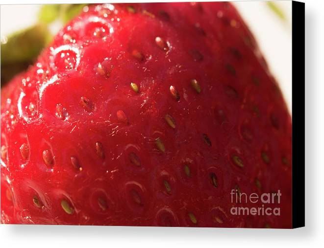 Strawberry Canvas Print featuring the photograph Strawberry Macro by Michelle Himes