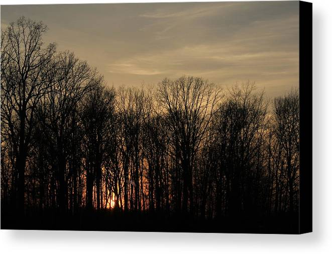 Sunset Canvas Print featuring the photograph Sunset by David Lyon