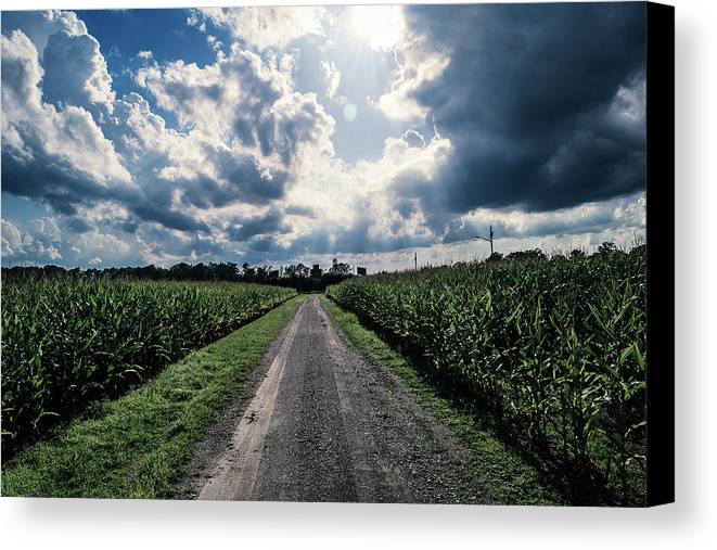 Sunshine Canvas Print featuring the photograph Sunshine On A Cloudy Day by Benjamin Dunlap