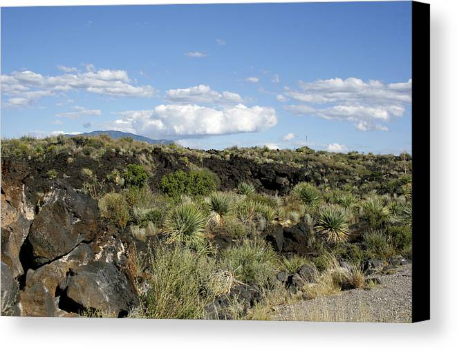 New Mexico Canvas Print featuring the photograph Sw03 Southwest by James D Waller
