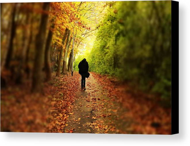 Walk Canvas Print featuring the photograph Take A Walk by Bijna Balan