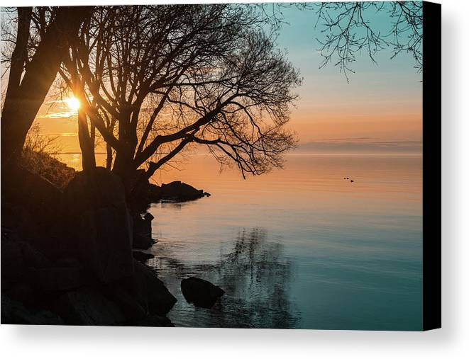 Georgia Mizuleva Canvas Print featuring the photograph Teal And Orange Morning Tranquility With Rocks And Willows by Georgia Mizuleva