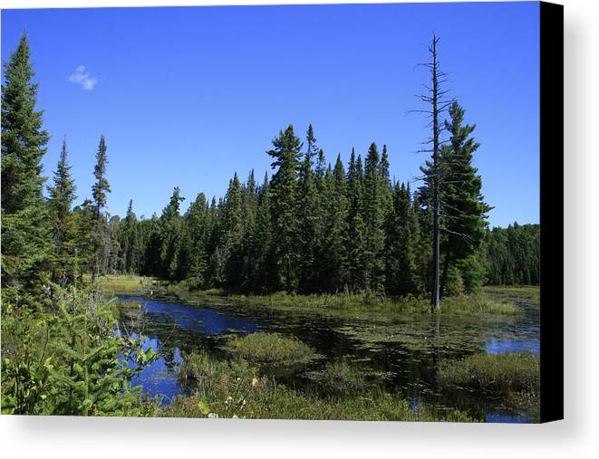 Landscape Canvas Print featuring the photograph Thank You Mother by Alan Rutherford