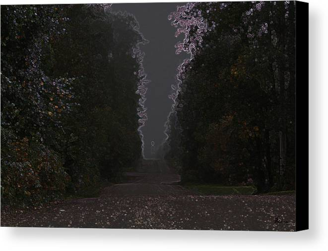 Road Ghost Boy Trees Laneway Treed Nature Colorful Leaves Plants Stones Canvas Print featuring the photograph The Adventurer by Andrea Lawrence