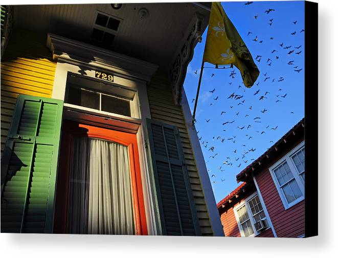 Skip Hunt Canvas Print featuring the photograph The Birds by Skip Hunt