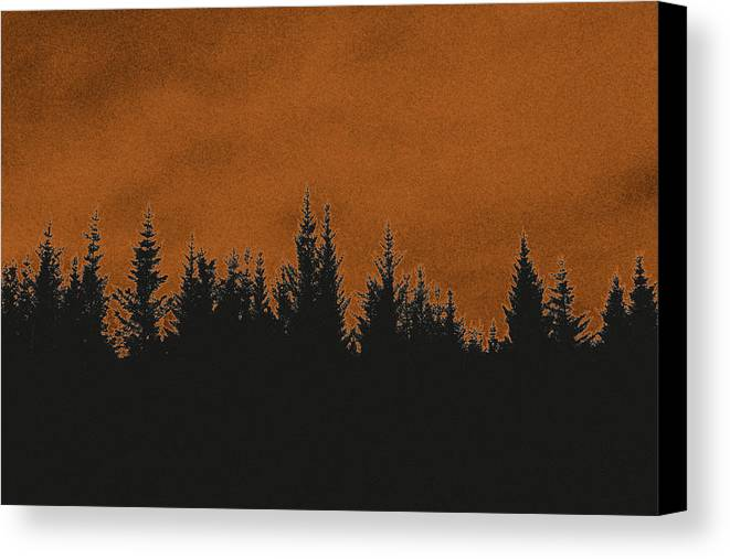 Forest Canvas Print featuring the photograph The Dawn by Thomas M Pikolin