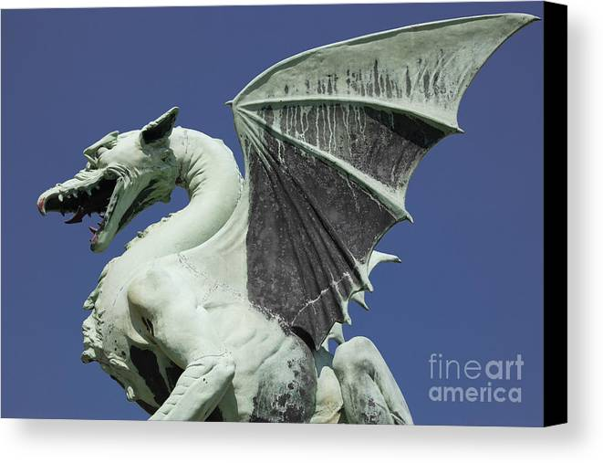 Dragon Canvas Print featuring the photograph The Dragon by Steve Outram