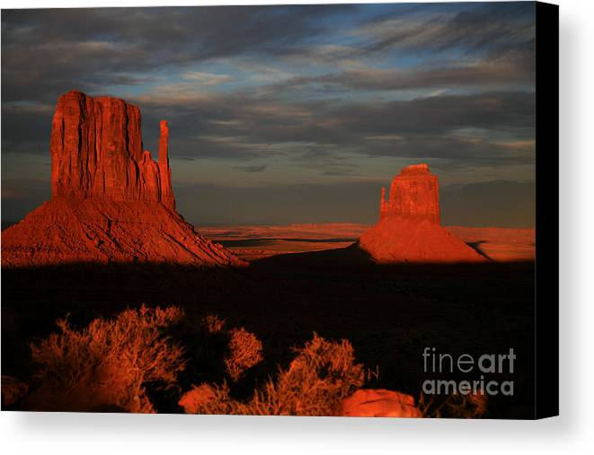 The Mittens Canvas Print featuring the photograph The Mittens by Timothy Johnson