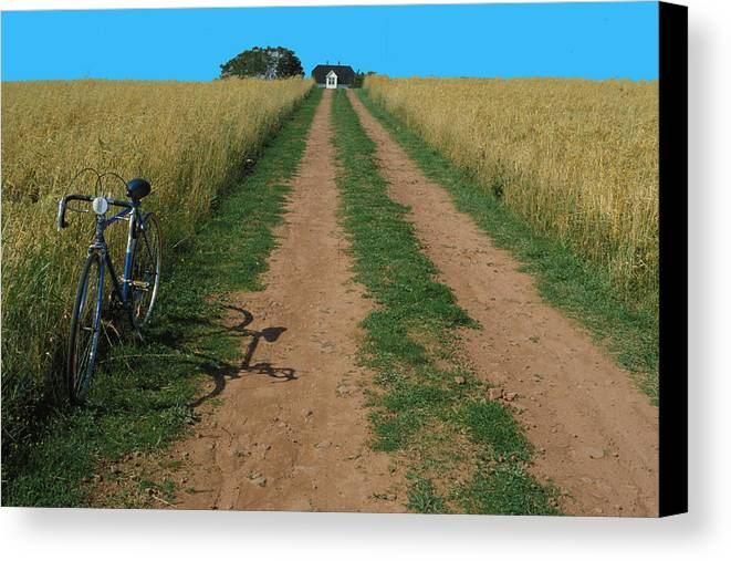 Dirt Canvas Print featuring the photograph The Road To Home by Carl Purcell