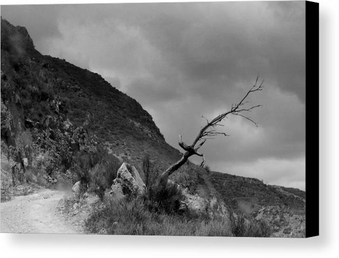 Jez C Self Canvas Print featuring the photograph The Road To Ugijar by Jez C Self