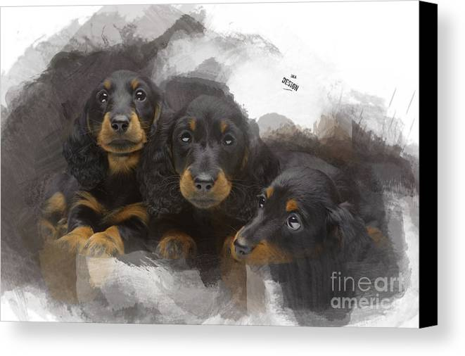 Imia Design Canvas Print featuring the digital art Three Adorable Black And Tan Dachshund Puppies by Maria Astedt