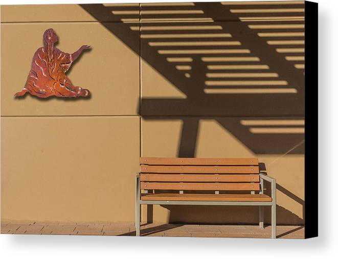 Photography Canvas Print featuring the photograph Transcendental by Paul Wear