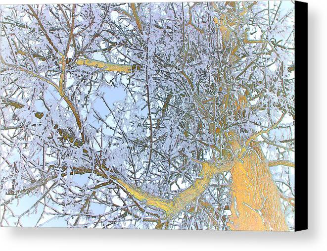 Tree Canvas Print featuring the photograph Tree Of Light by Jasmin Mori