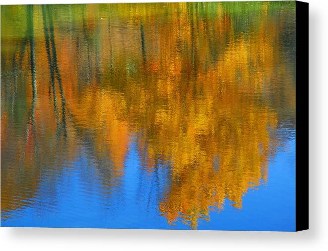 Fall Color Canvas Print featuring the photograph Tree Reflection 'painting' by Alan Lenk