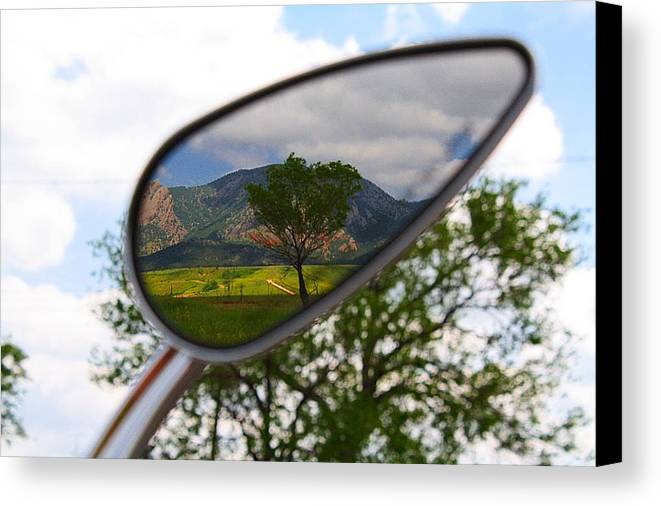 Mirrored Canvas Print featuring the photograph Tree Reflections by KatagramStudios Photography