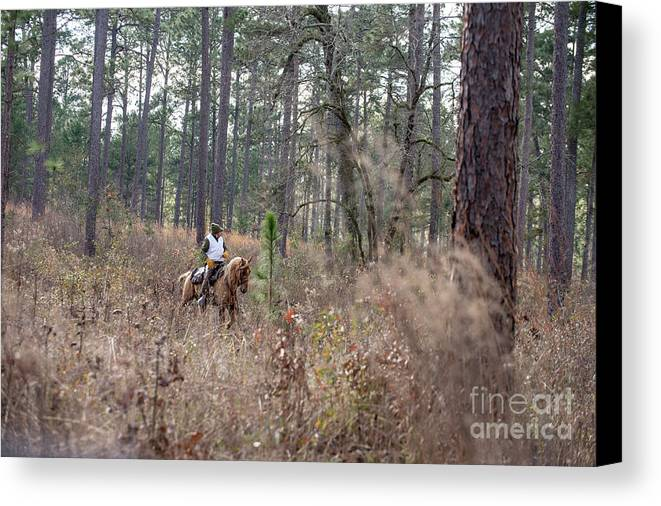 Canvas Print featuring the photograph Trey8 by Chip Laughton