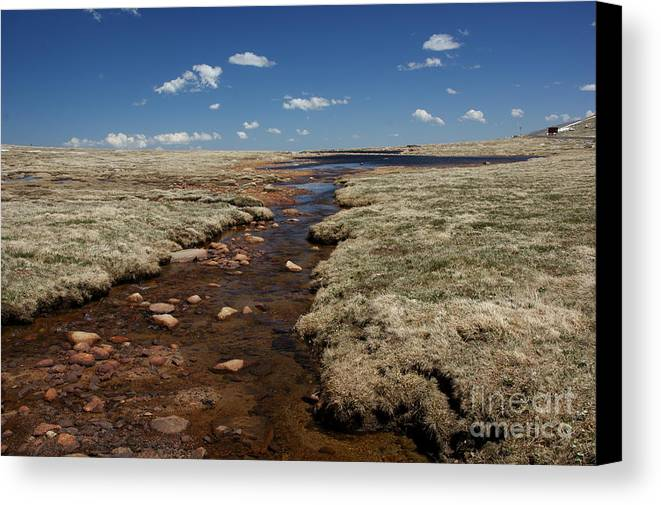 Tundra Canvas Print featuring the photograph Tundra Creek by David Pettit