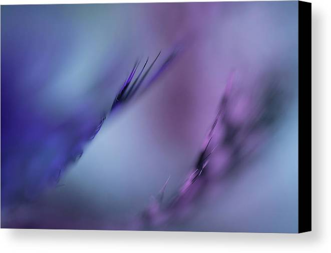 Jenny Rainbow Fine Art Photography Canvas Print featuring the photograph Divine Messengers. Angel Flight Series by Jenny Rainbow