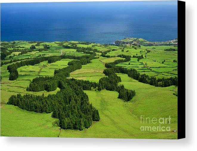Landscape Canvas Print featuring the photograph Typical Azores Islands Landscape by Gaspar Avila